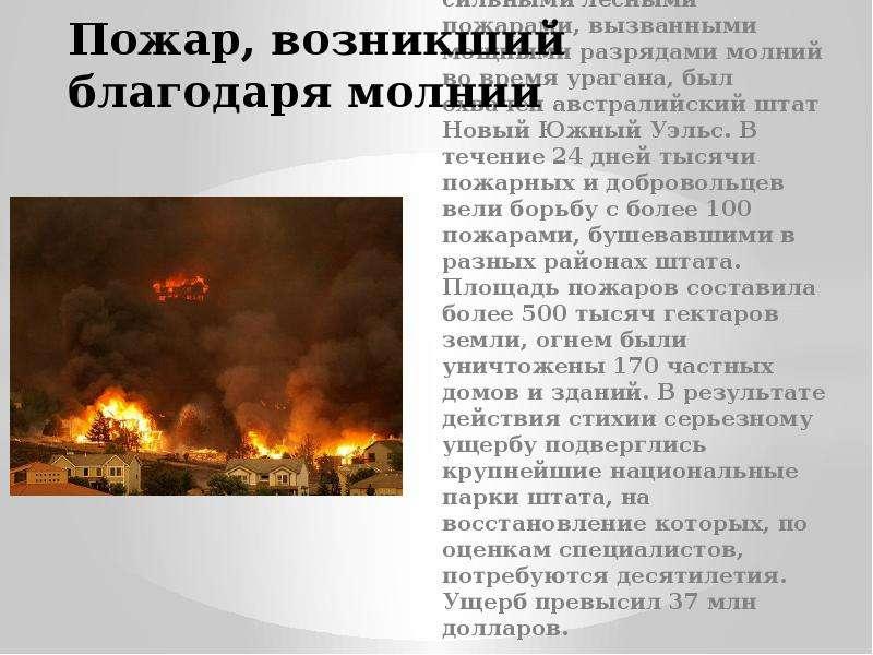 Пожар, возникший благодаря молнии В декабре 2001- январе 2002 г. сильными лесными пожарами, вызванны