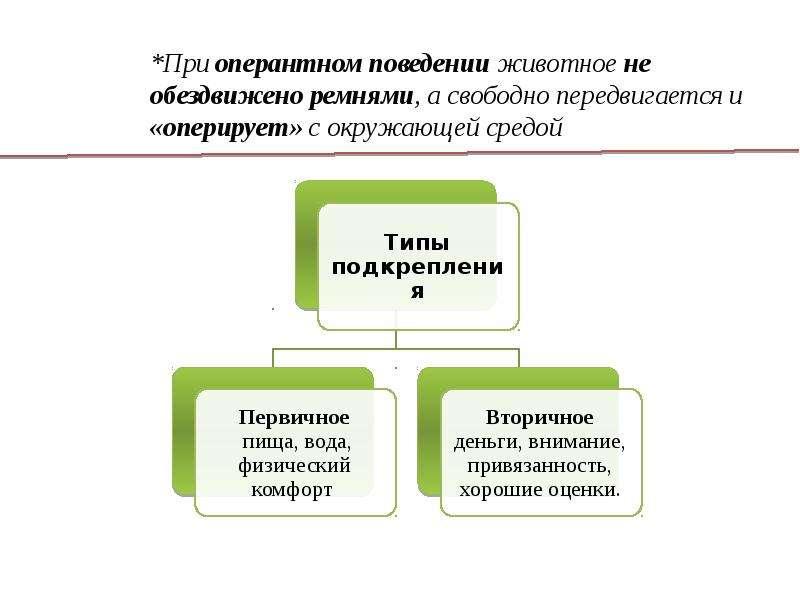 Бихевиоризм: базовые принципы, экспериментальные методы исследования, этапы развития, слайд 7