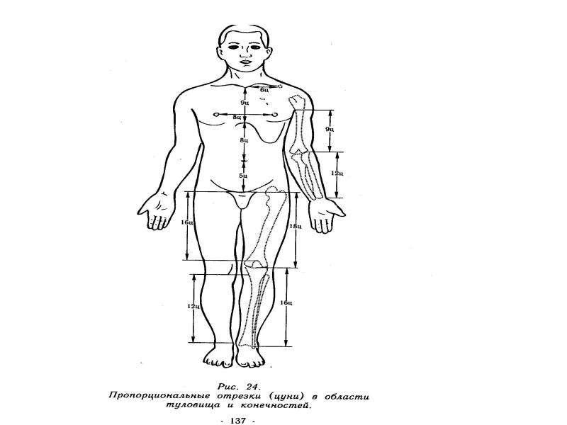Основы точечного массажа, рис. 11