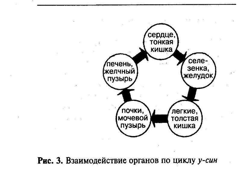 Основы точечного массажа, рис. 3