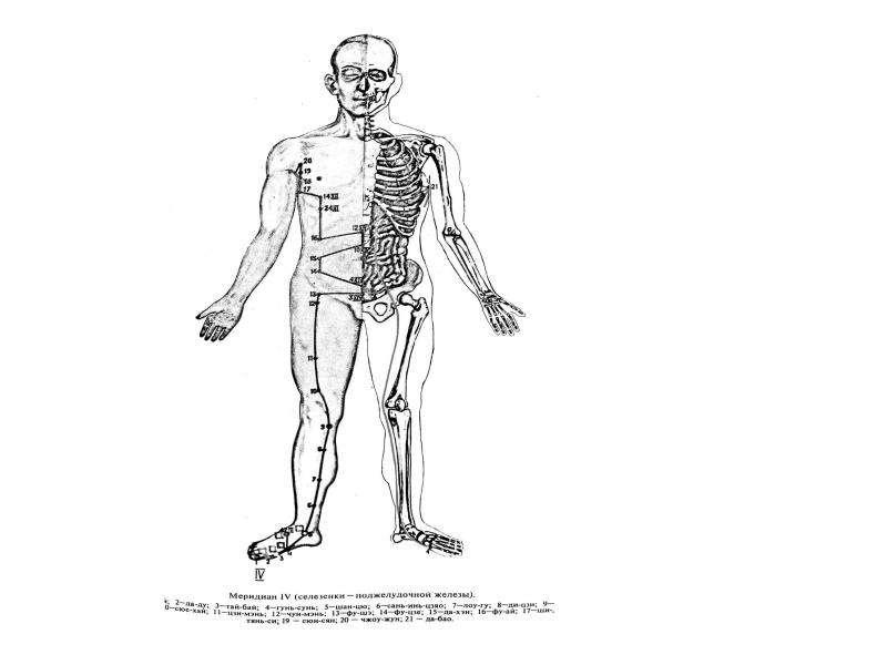 Основы точечного массажа, рис. 36
