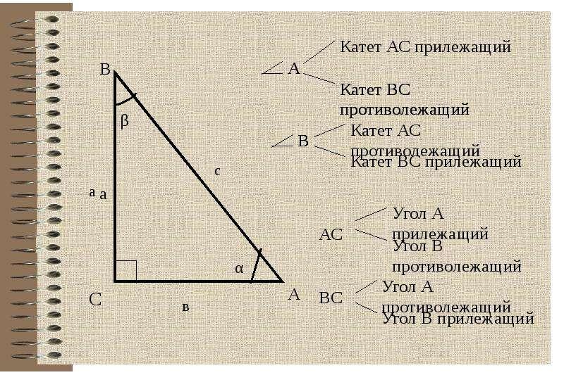 Соотношение между сторонами и углами в прямоугольном треугольнике, слайд 7
