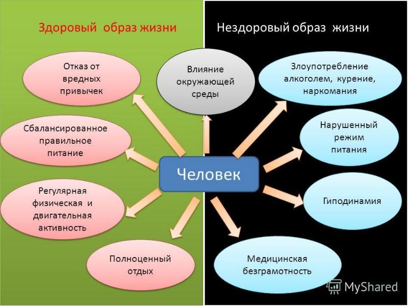 Факторы, укрепляющие и ослабляющие здоровье, слайд 5
