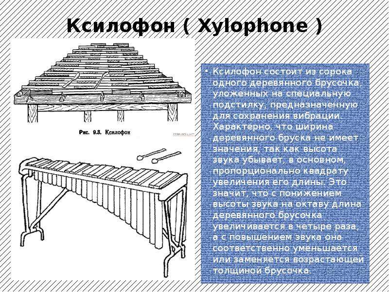 Ксилофон ( Xylophone ) Ксилофон состоит из сорока одного деревянного брусочка, уложенных на специаль