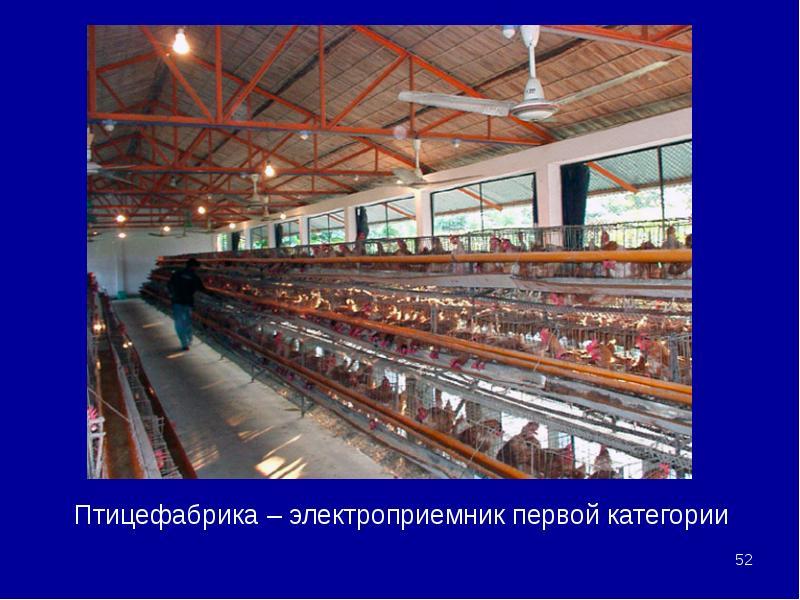 Птицефабрика – электроприемник первой категории Птицефабрика – электроприемник первой категории
