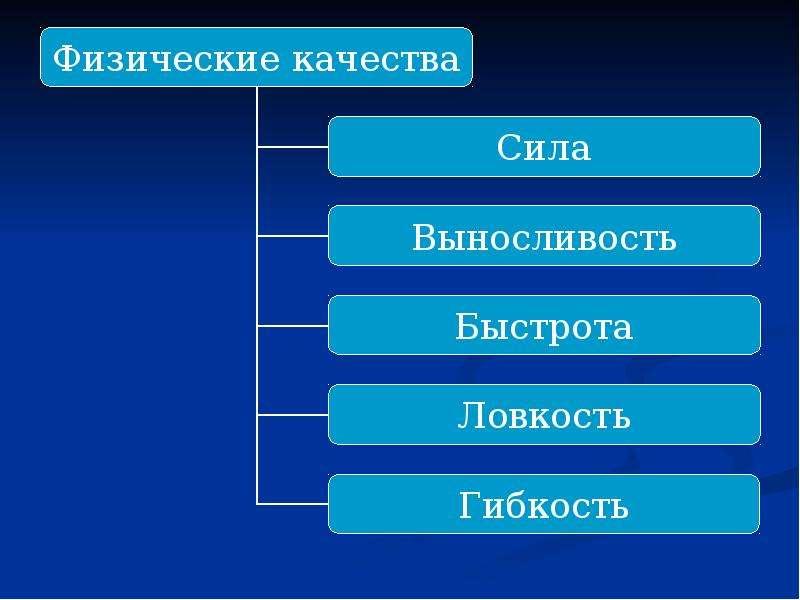 Развитие физических качеств спортсменов, слайд 4