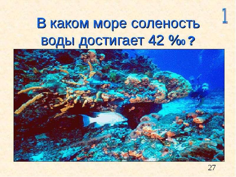 В каком море соленость воды достигает 42 %0 ?