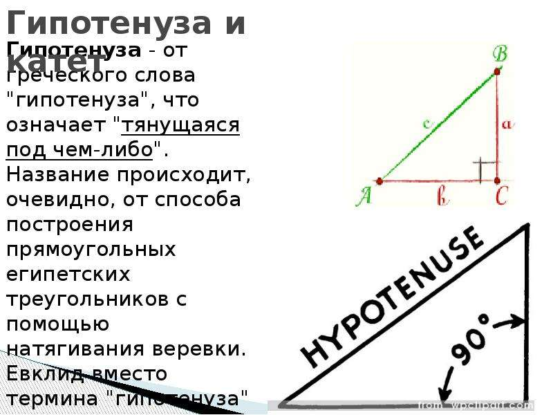 """Гипотенуза и катет Гипотенуза - от греческого слова """"гипотенуза"""", что означает """"тянущ"""