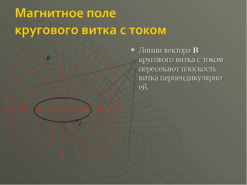 Линии вектора B кругового витка с током пересекают плоскость витка перпендикулярно ей. Линии вектора