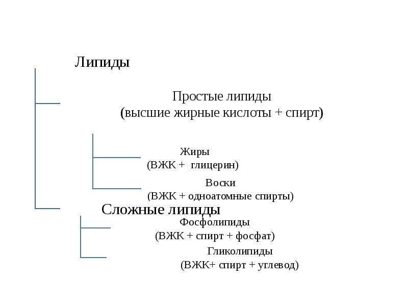 Липиды. Составные части липидов, рис. 3