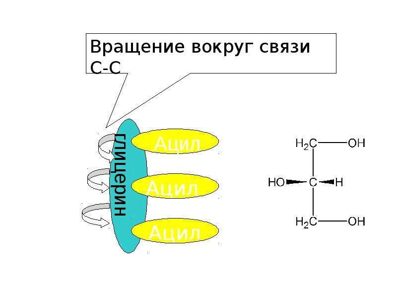 Липиды. Составные части липидов, рис. 6