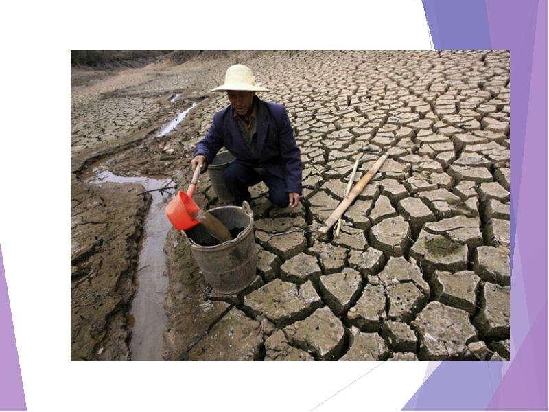 Экологические проблемы регионального и глобального характера их причины возникновения и возможные способы решения, рис. 11