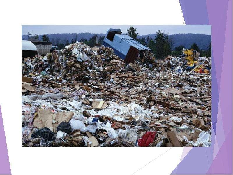 Экологические проблемы регионального и глобального характера их причины возникновения и возможные способы решения, рис. 8