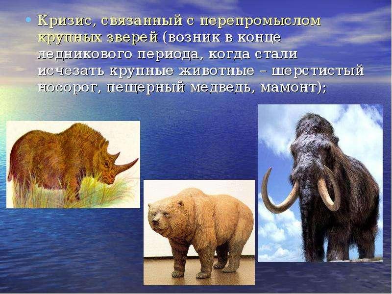 Кризис, связанный с перепромыслом крупных зверей (возник в конце ледникового периода, когда стали ис