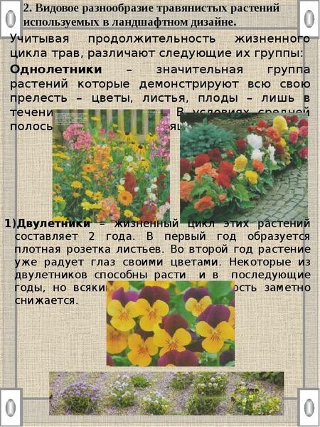 2. Видовое разнообразие травянистых растений используемых в ландшафтном дизайне. Учитывая продолжите