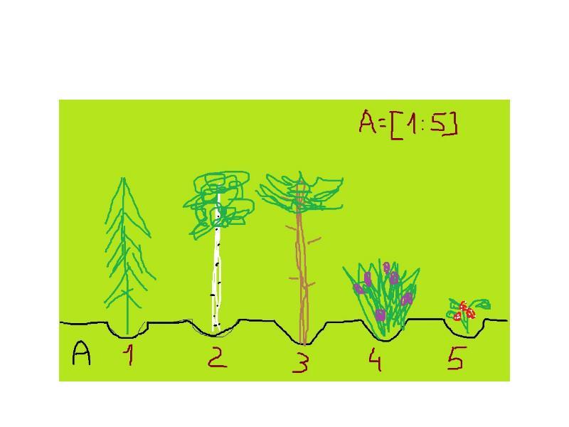 Циклический алгоритм обработки массива чисел, слайд 7