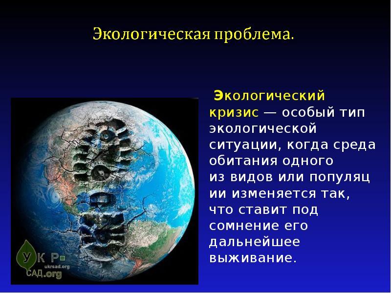 Экологический кризис — особый тип экологической ситуации, когда среда обитания одного из видов или п