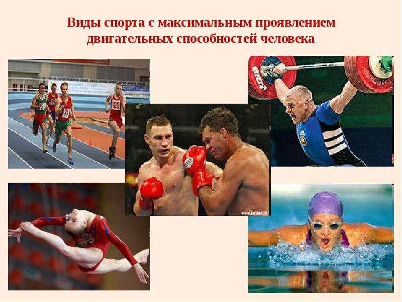 Виды спорта с максимальным проявлением двигательных способностей человека