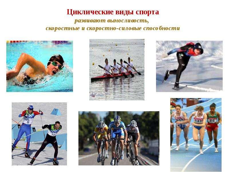 Циклические виды спорта развивают выносливость, скоростные и скоростно-силовые способности
