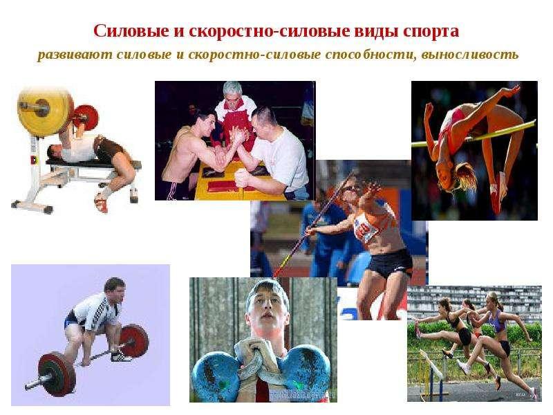 Силовые и скоростно-силовые виды спорта развивают силовые и скоростно-силовые способности, выносливо