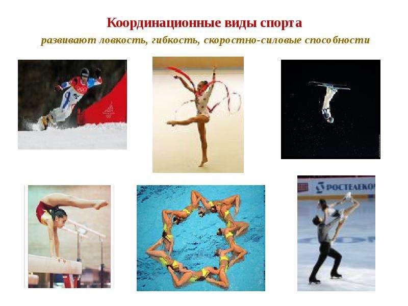 Координационные виды спорта развивают ловкость, гибкость, скоростно-силовые способности