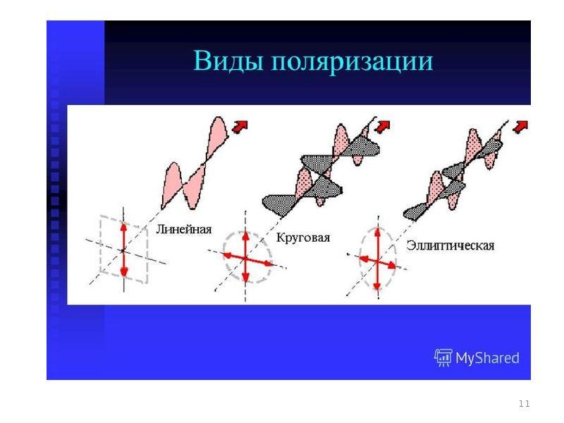 линейная поляризация картинки