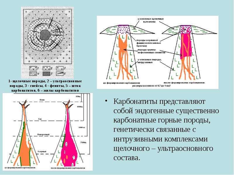 1- щелочные породы, 2 – ультраосновные породы, 3 - гнейсы, 4 - фениты, 5 – шток карбонатитов, 6 – жи