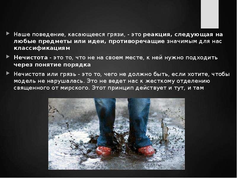 Наше поведение, касающееся грязи, - это реакция, следующая на любые предметы или идеи, противоречащи