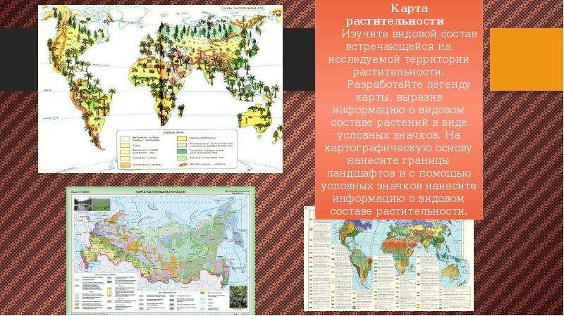 Геоэкологическое картографирование, слайд 9