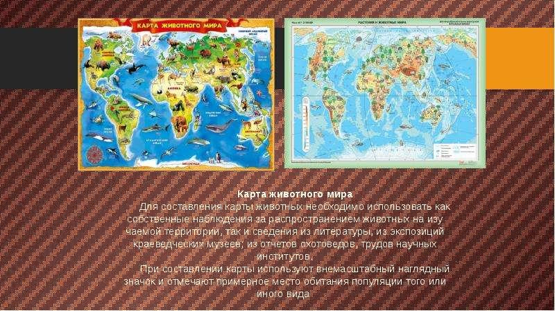 Геоэкологическое картографирование, слайд 10