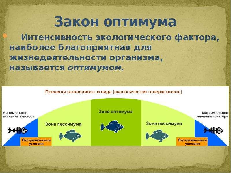 Закон оптимума Интенсивность экологического фактора, наиболее благоприятная для жизнедеятельности ор