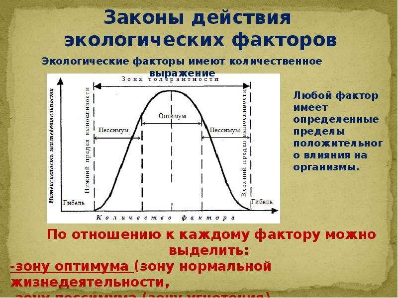 Влияние экологических факторов на организмы, рис. 10