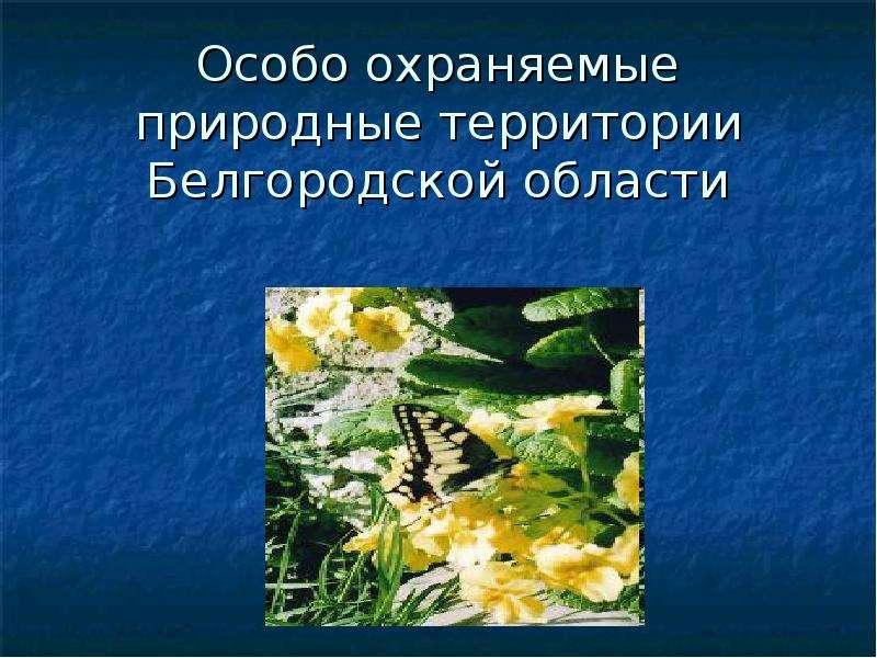Презентация Особо охраняемые территории Белгородской области