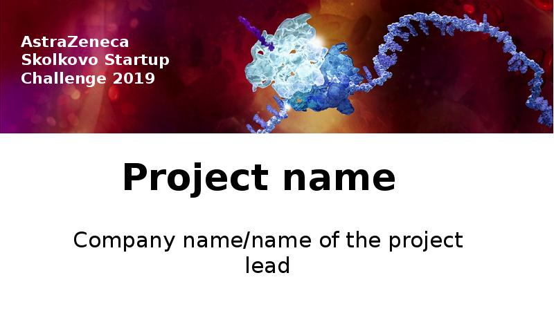Company name/name of the project lead