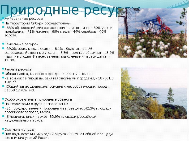 Природные ресурсы Минеральные ресурсы На территории Сибири сосредоточены: - 85% общероссийских запас