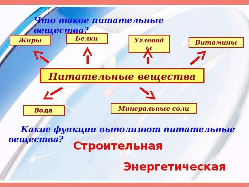 Значение и состав пищи, рис. 7