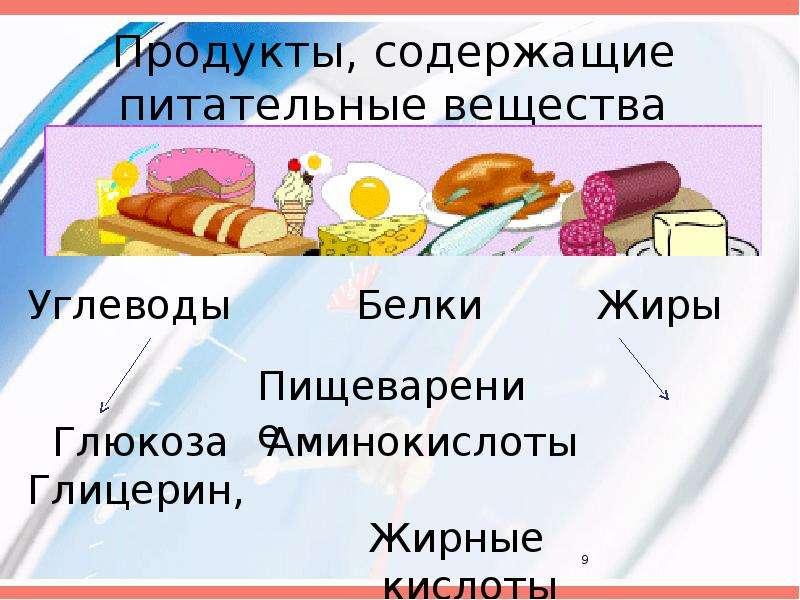 Значение и состав пищи, рис. 9