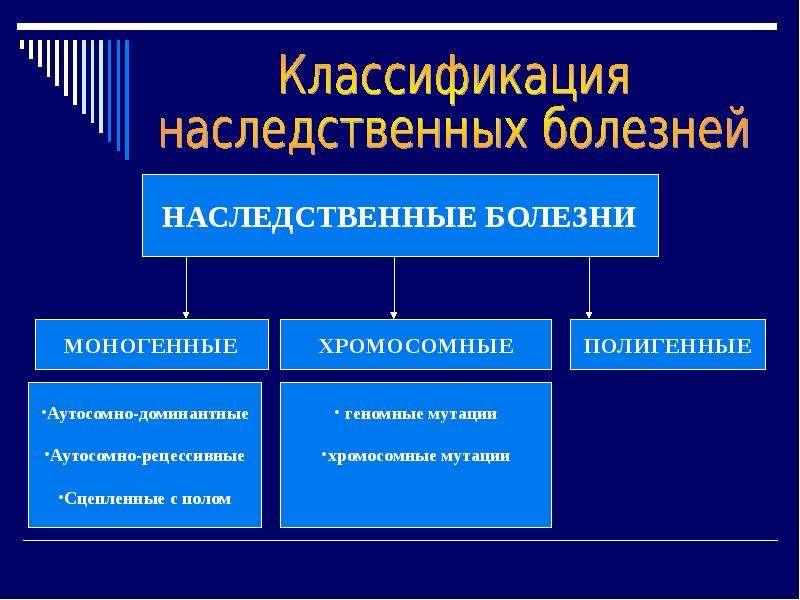 Наследственные болезни человека, слайд 4