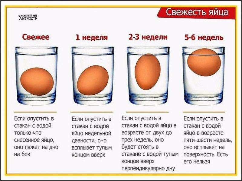 Контроль за качеством продуктов питания, слайд 12