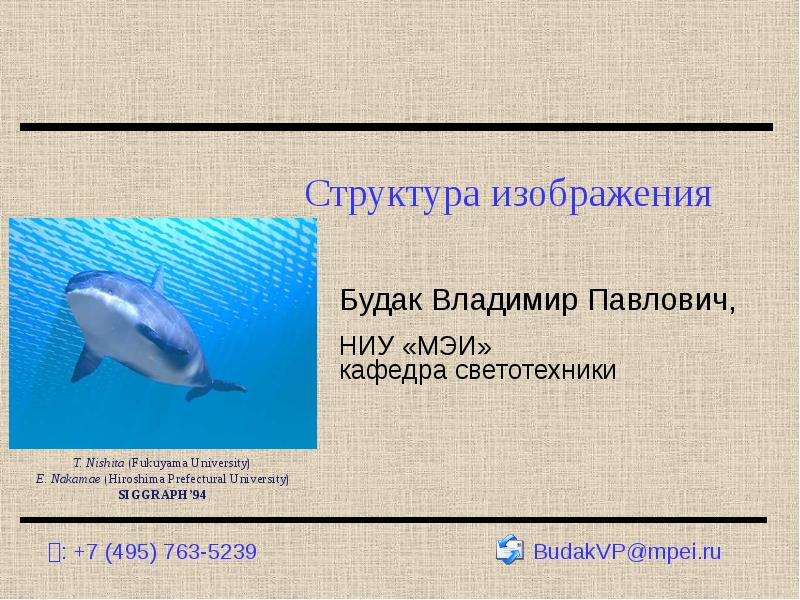 Структура изображения Будак Владимир Павлович, НИУ «МЭИ» кафедра светотехники