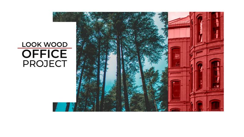 Look Wood Office Project. Акустические системы в офисе