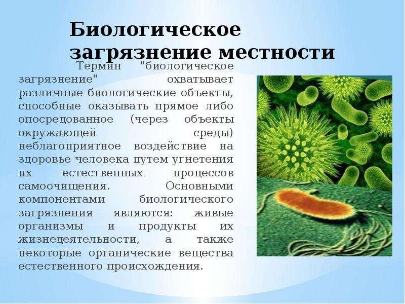 """Биологическое загрязнение местности Термин """"биологическое загрязнение"""" охватывает различны"""