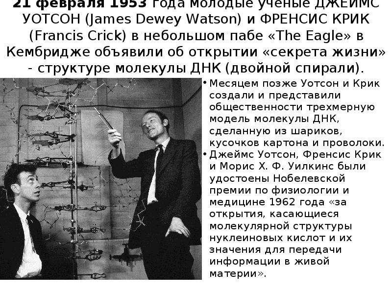 21 февраля 1953 года молодые ученые ДЖЕЙМС УОТСОН (James Dewey Watson) и ФРЕНСИС КРИК (Francis Crick