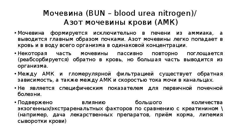 Мочевина (BUN – blood urea nitrogen)/ Азот мочевины крови (АМК) Мочевина формируется исключительно в