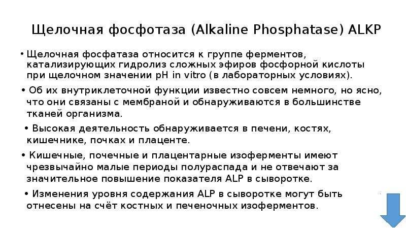 Щелочная фосфотаза (Alkaline Phosphatase) ALKP Щелочная фосфатаза относится к группе ферментов, ката