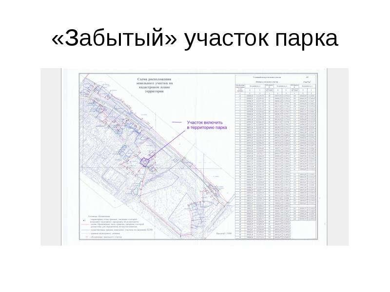 «Забытый» участок парка