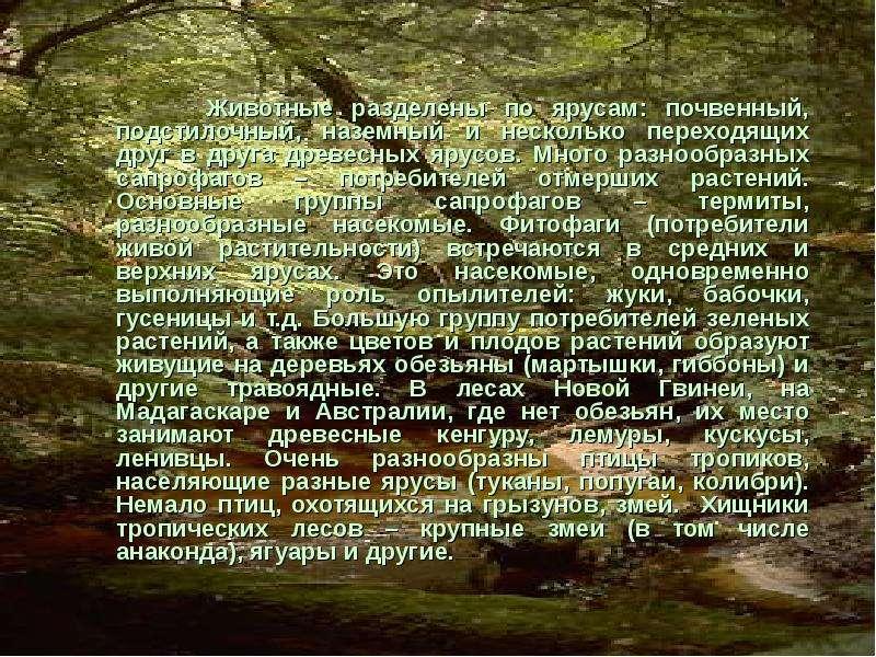 Животные разделены по ярусам: почвенный, подстилочный, наземный и несколько переходящих друг в друга