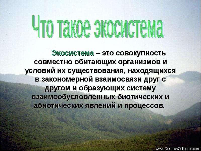 Экосистема – это совокупность совместно обитающих организмов и условий их существования, находящихся