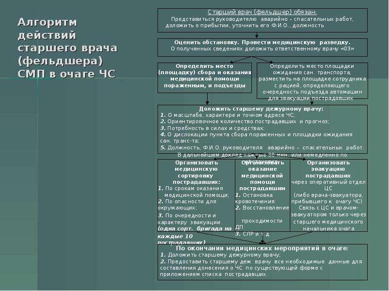 Алгоритм действий старшего врача (фельдшера) СМП в очаге ЧС