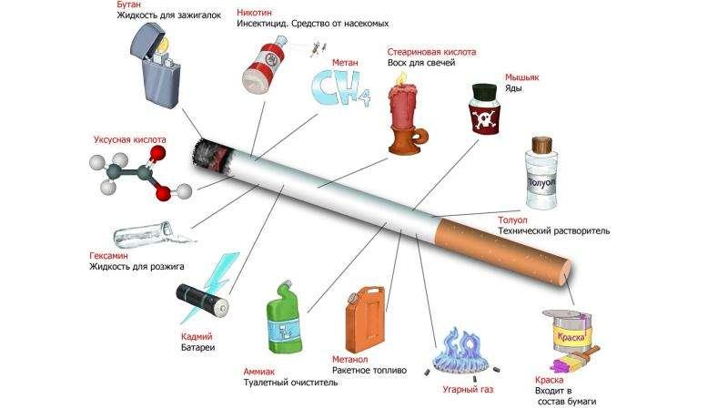 Табакокурение. История табакокурения, слайд 5